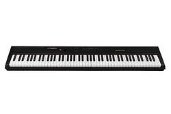 ARTESIA PERFORMER-BK PIANO (new)