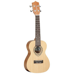 Tanglewood TWT9 Natural Gloss concert (new)