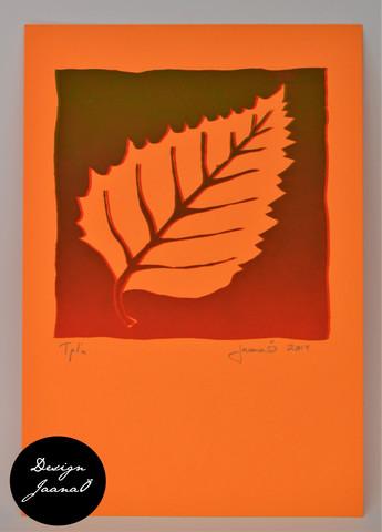 Lehti - kortti - punavihreä C
