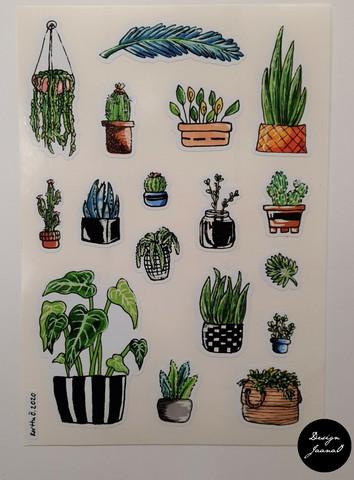 Tarrat - kasvit 1