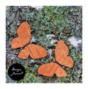 Perhos korvakorut