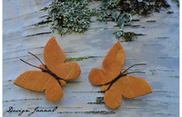 Perhoskorvakorut - pienet 1