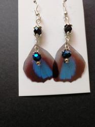 Butterfly wings earrings with blue drop