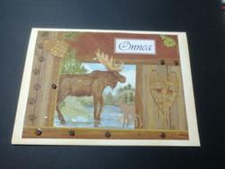 Handmade moose card