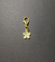 Pantakoru, kultainen kukka