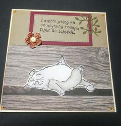 Laiskotteleva kissa -kortti