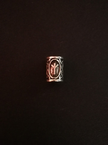 Beardbead viking rune Algiz