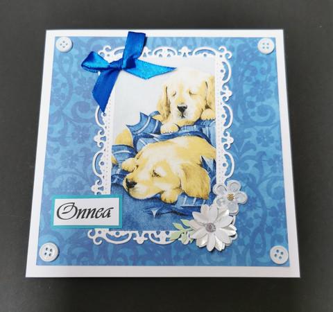 Koirakortti sininen