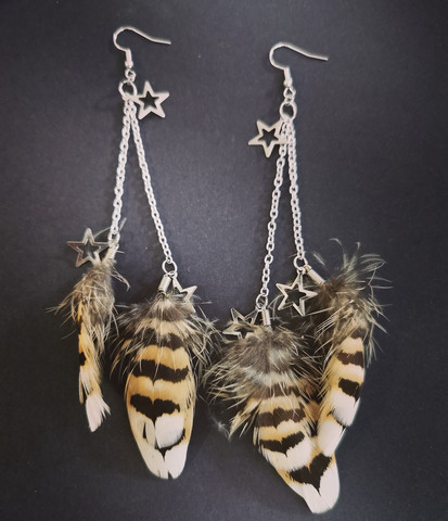 Feather earrings with stars