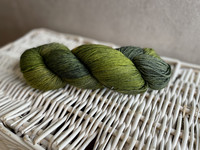 Malabrigo sock, väri 138 Ivy
