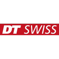 DT SWISS COMPETITION 283 MM SILVER