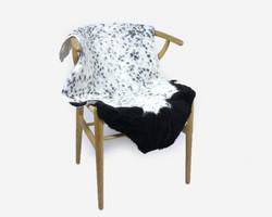 Lampaantalja lyhytvillainen valkoinen mustanruskeilla villaosioilla
