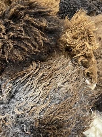 Lampaantaljapaloja Ruskea lajitelma Pieni pussi