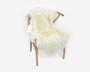 Lampaantalja hunajaisen luonnonvalkoinen pitkävillainen