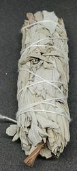 Valkoinen Salvia