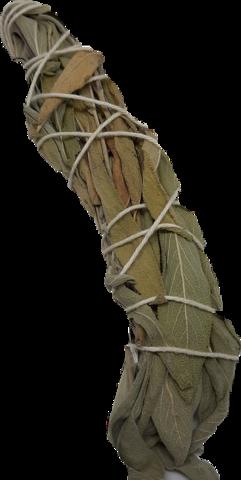 Valko Salvia