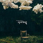 PARK BOM - SPRING (SINGLE ALBUM)