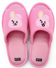BT21 - MESH SLIPPERS - COOKY