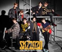 STRAY KIDS - SKZ2020 (2CD+DVD / LIMITED EDITION)