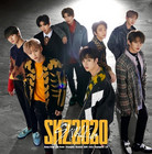 STRAY KIDS - SKZ2020 (2CD / REGULAR EDITION)