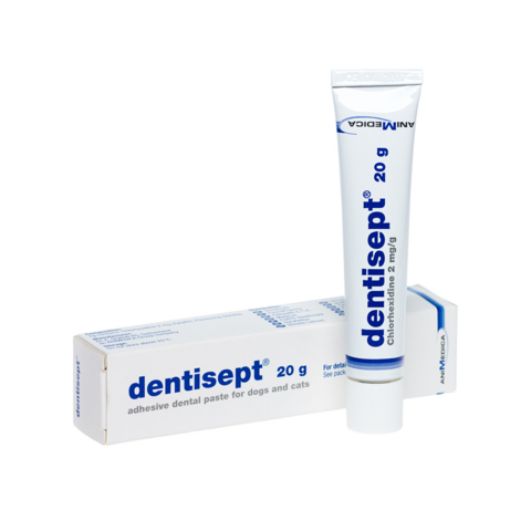 Dentisept hammasgeeli 20 g