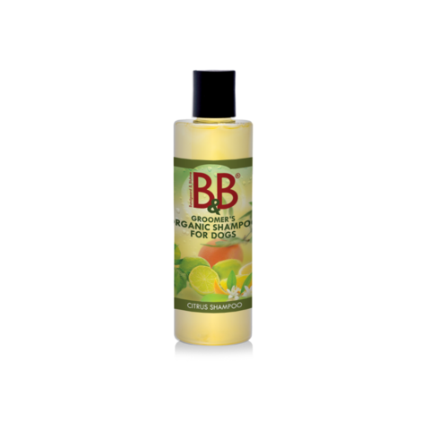 B&B orgaaninen Citrus shampoo 100 ml