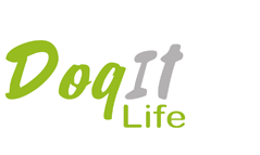 Dog It Life