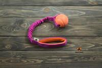 Dog's Craft Fetch Basic