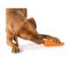 Planet Dog Orbee Tuff Porkkana