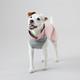 PAIKKA Recovery Winter Shirt - Palautumispaita, pinkki