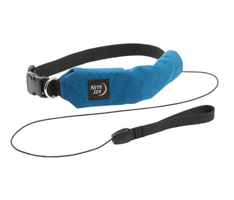Nite Ize RadDog All-in-One Collar + Leash
