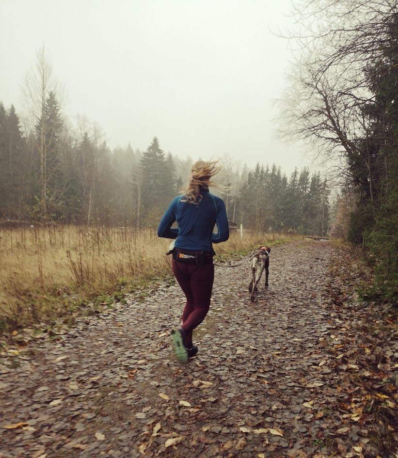 Sipoonkorpi Trailrun 14km | Polkujuoksu koiran kanssa | Traildog.fi
