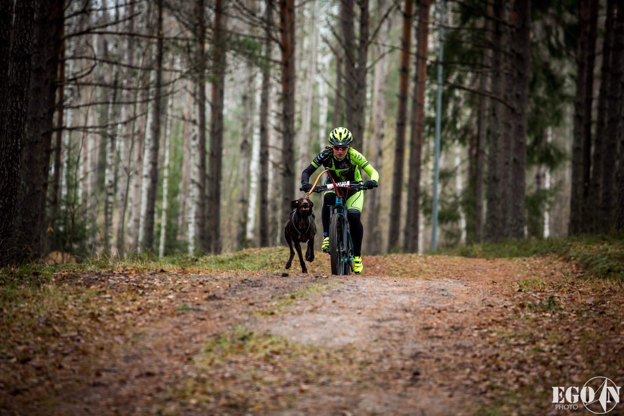 Kisaraportti koirapyöräilyn MM-kilpailuista 2019 | Traildog.fi
