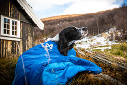 Non-stop dogwear Ly makuupussi