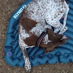 Klymit Moon Dog Bed makuualusta