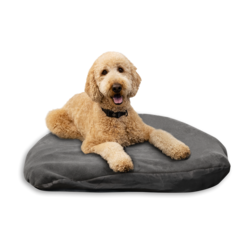 Klymit Moon Dog Bed makuualusta
