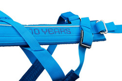 Non-stop Dogwear Freemotion Harness 10th Anniversary