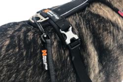 Non-stop dogwear Rock Leash 2020