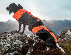 Non-stop dogwear Beta Pro Raincoat