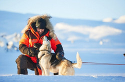 Non-stop dogwear Arctic Votta rukkaset