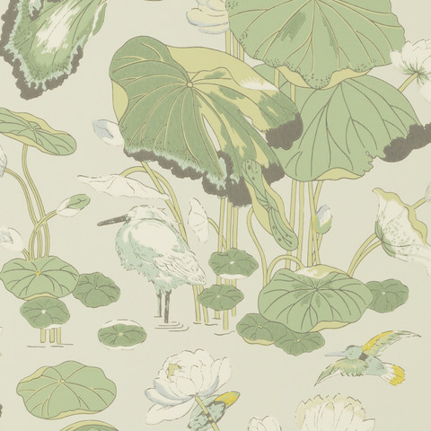 Nympheus - Botanical BW45083.4