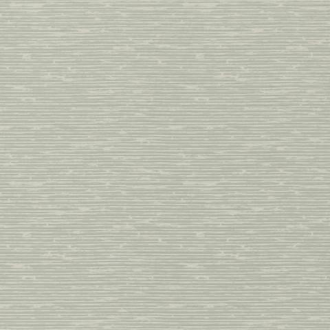Grasscloth - Soft Green BW45049.6
