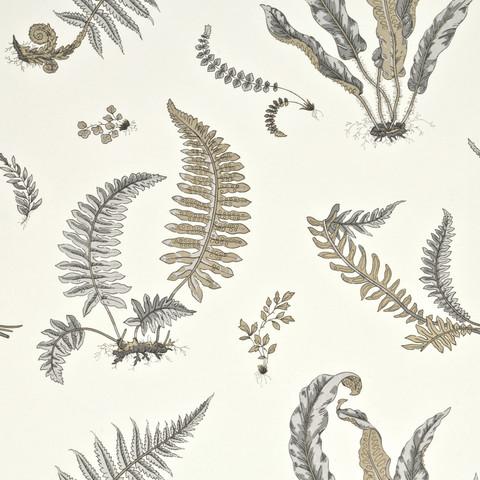 Ferns - Dove Grey/Silver BW45044.4