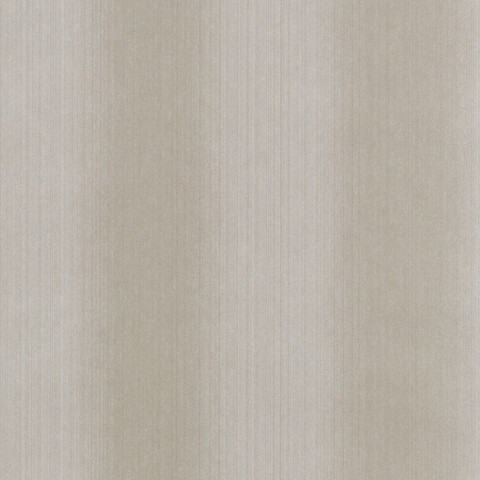 LANGDALE OMBRE TEXTURE - STONE BW45068.5