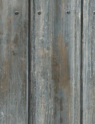 Timber Driftwood