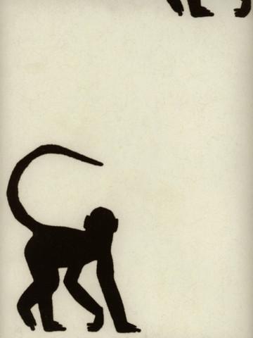 Cheeky Monkey Ebony