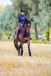 Kingsland Katja Pull-On ratsastushousut polvigripeillä, viininpunainen, koko 40