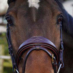 Dy'on Anatomic Flash Noseband suitset, ruskea, koko full