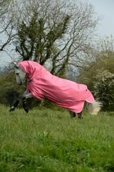 Bucas Dublin -riimu, hot pink