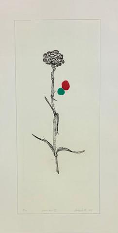 Konttinen Kukan jälki VI